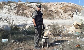 Canine Unit Thwarts Bomb Attack in Jerusalem
