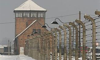 Netanyahu's Not Alone on Auschwitz Lessons
