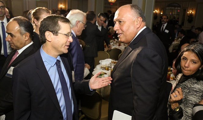 Herzog with Egyptian foreign minister