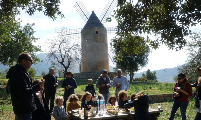 Members of the Jewish community of Mallorca, Spain, attend a Tu b'Shvat picnic,